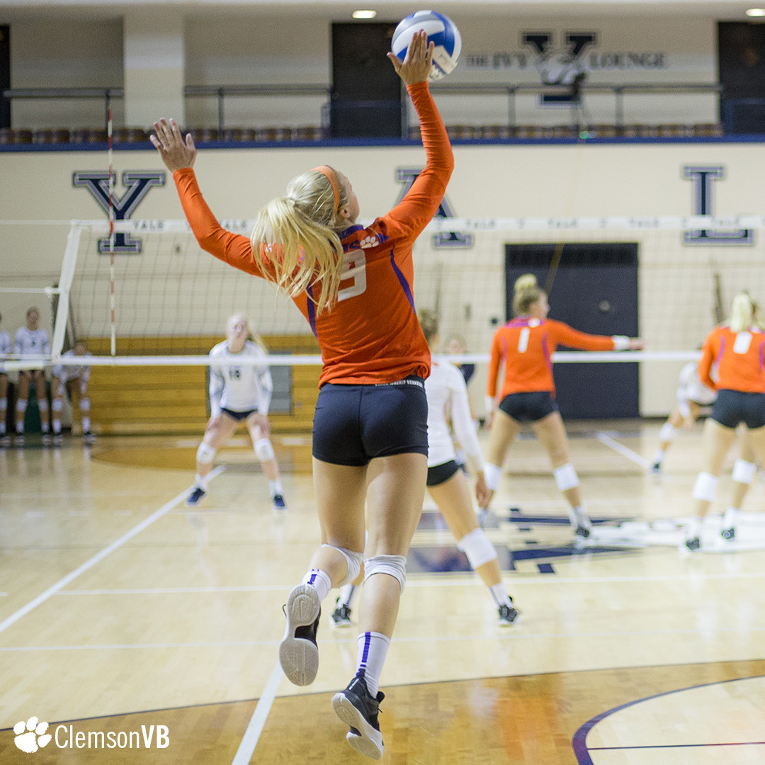 Volleyball Splits at Yale Saturday