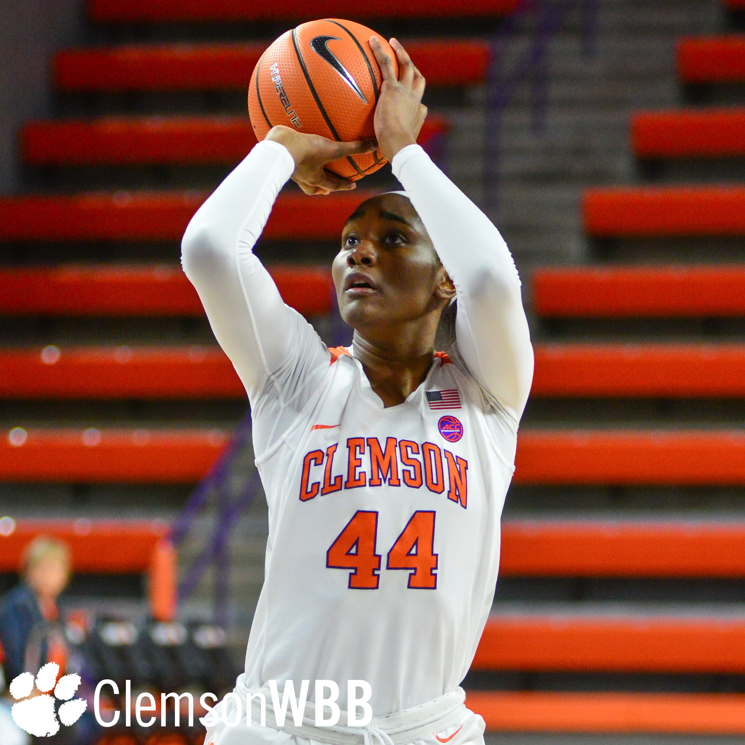 Clemson Falls to Georgia Tech in Atlanta Sunday