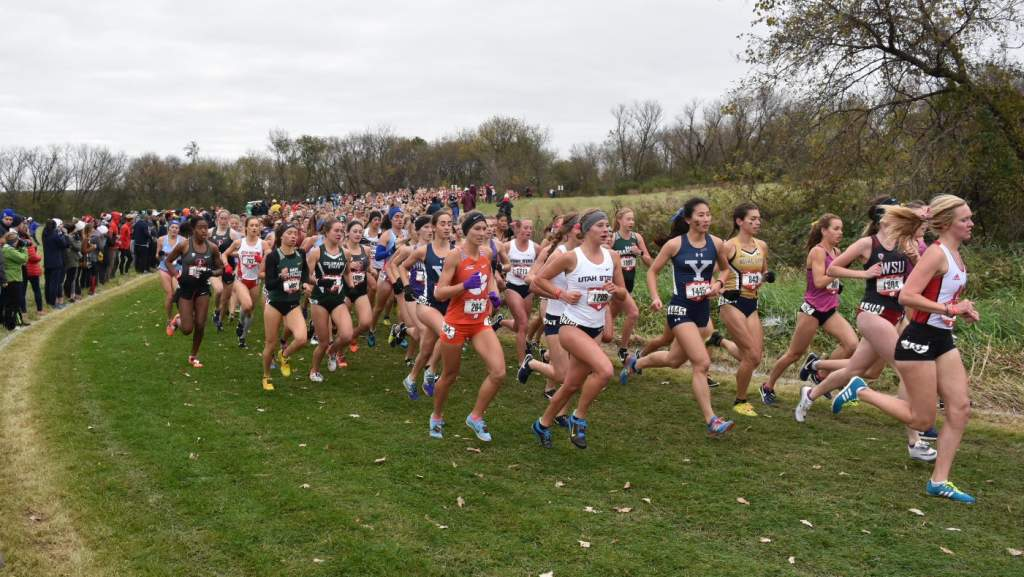 Cross Country Set for ACC Championships