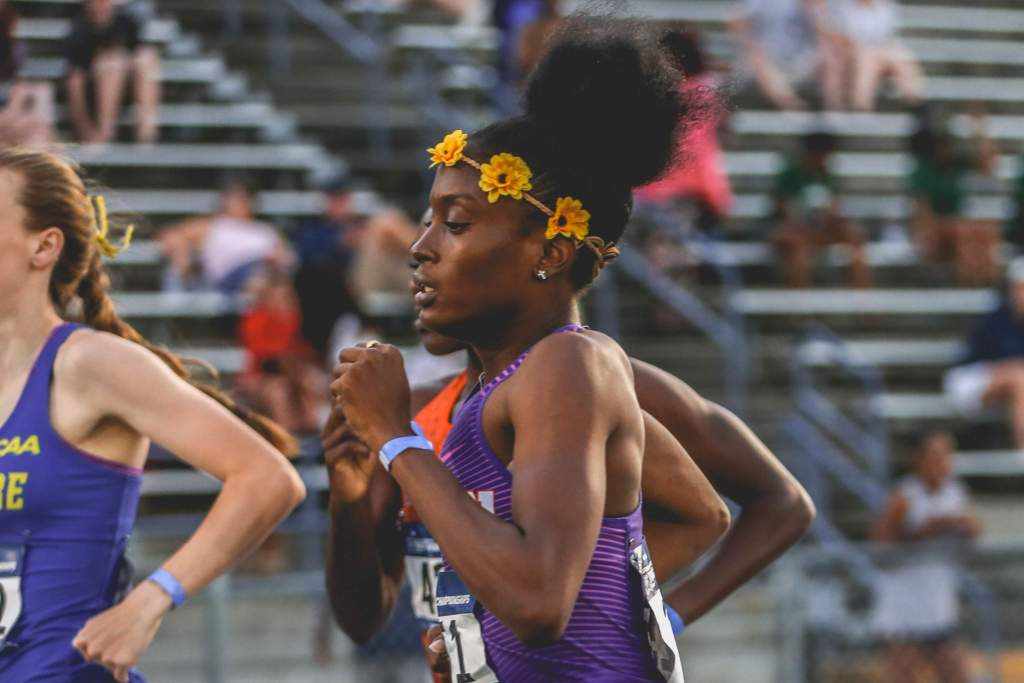 Seven Tigers Set To Compete at USA, Jamaica Outdoor Nationals