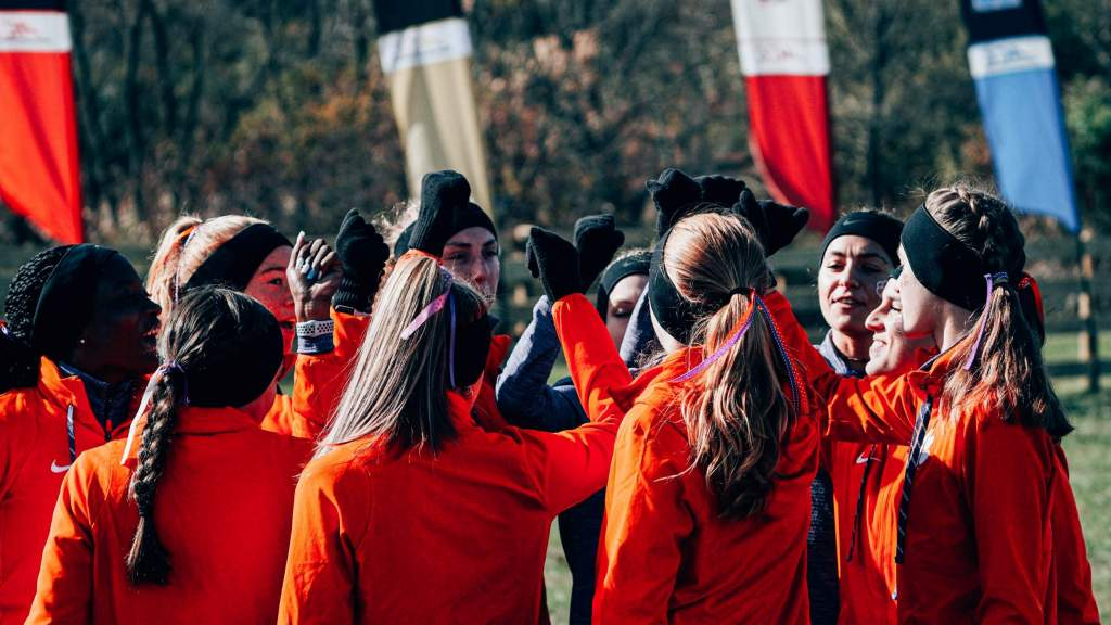 Tigers Set to Compete at NCAA Southeast Regionals