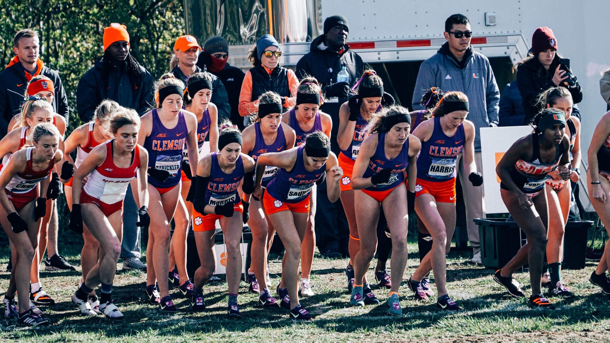 Clemson Tigers   Clemson University Athletics   Cross Country